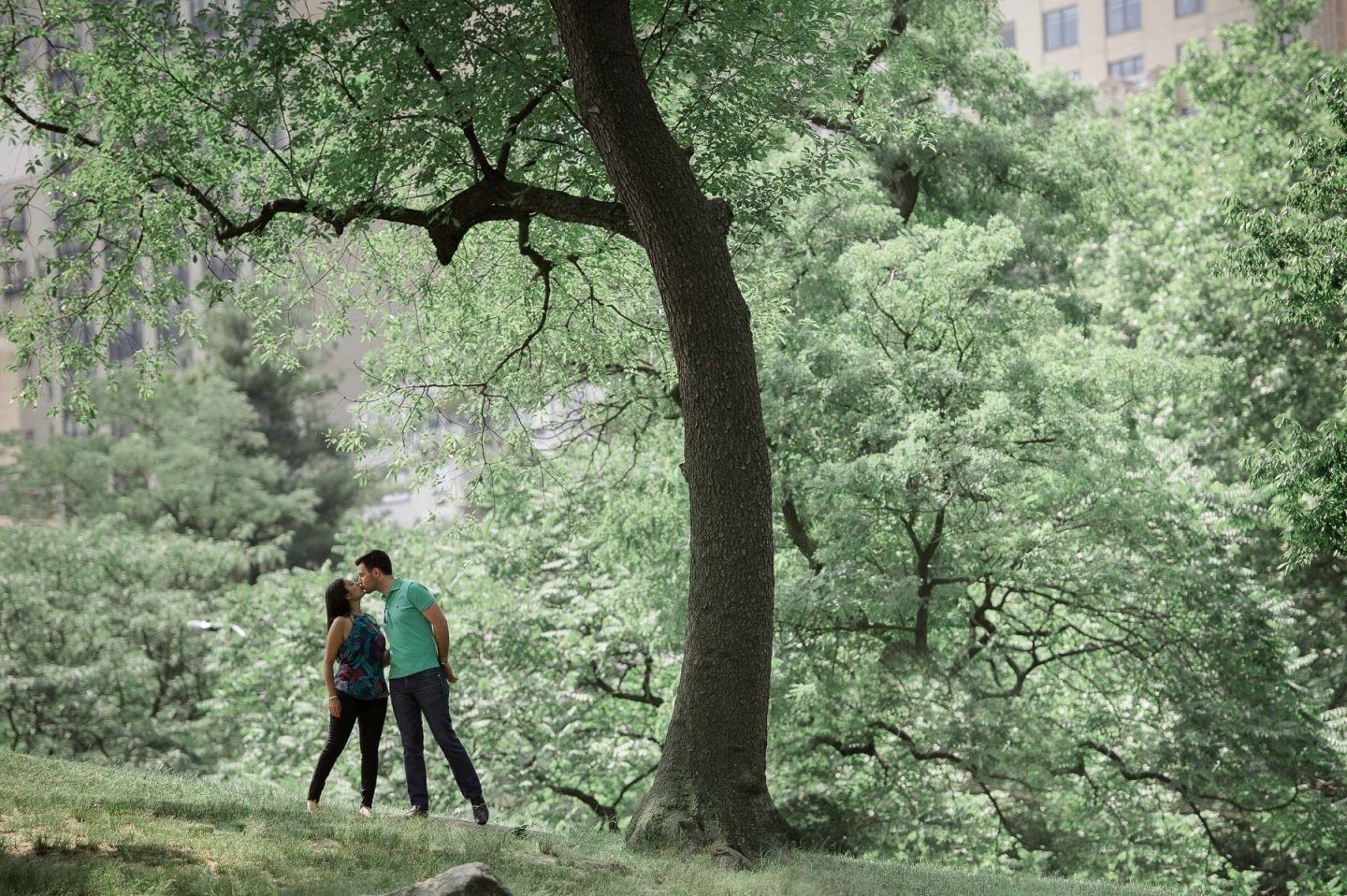 Central Park Engagement Sessions