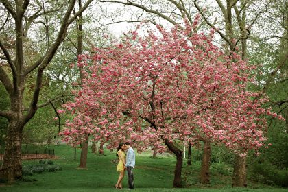 Central Park Spring Engagement Session